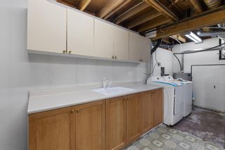 Photo 29: 43 Castlefall Crescent NE in Calgary: Castleridge Detached for sale : MLS®# A1136695