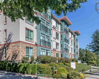 """Photo 33: 306 33485 SOUTH FRASER Way in Abbotsford: Central Abbotsford Condo for sale in """"CITADEL RIDGE"""" : MLS®# R2496142"""