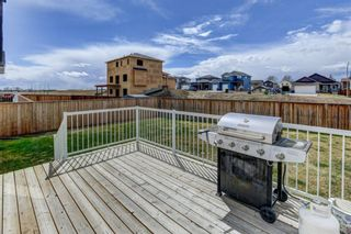 Photo 27: 27 Havenfield: Carstairs Detached for sale : MLS®# A1103516