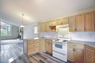 Photo 5: 3027 Beil Avenue NW in Calgary: Brentwood Detached for sale : MLS®# A1117156