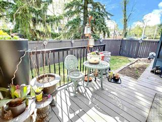 Photo 30: 10704 130 Street in Edmonton: Zone 07 House for sale : MLS®# E4247441