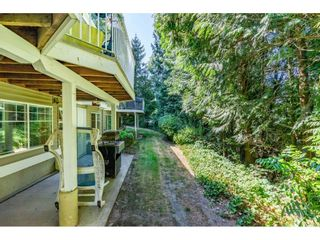"""Photo 38: 15 35253 CAMDEN Court in Abbotsford: Abbotsford East Townhouse for sale in """"Camden Court"""" : MLS®# R2600952"""