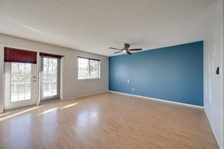 Photo 19: 1821 232 Avenue in Edmonton: Zone 50 House for sale : MLS®# E4251432