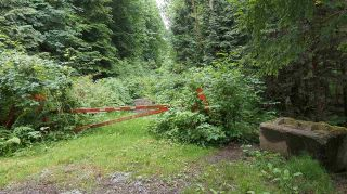Photo 5: 14.65AC BARRETT STREET in Mission: Mission BC Land for sale : MLS®# R2079511