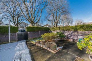 Photo 19: 8282 FREMLIN Street in Vancouver: Marpole 1/2 Duplex for sale (Vancouver West)  : MLS®# R2340791