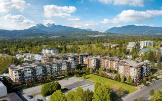 """Photo 1: 315 12109 223 Street in Maple Ridge: East Central Condo for sale in """"Inspire"""" : MLS®# R2624412"""