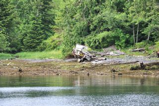 Photo 4: DL1833 Cracroft Island in : Isl Small Islands (North Island Area) Land for sale (Islands)  : MLS®# 887818