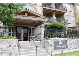 """Photo 9: 211 250 SALTER Street in New Westminster: Queensborough Condo for sale in """"PADDLERS LANDING"""" : MLS®# V901158"""