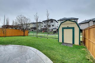 Photo 45: 73 Canals Circle SW: Airdrie Detached for sale : MLS®# A1104916