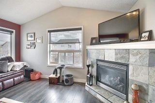 Photo 5: 9519 208 Street in Edmonton: Zone 58 House for sale : MLS®# E4241415