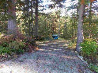 Photo 5: Pender Harbor Property and Land  For Sale