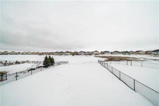 Photo 48: 92 Massalia Drive | Amber Trails Winnipeg