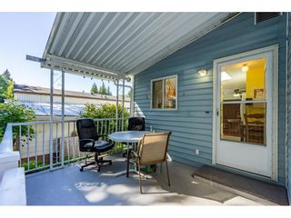"Photo 29: 34 2315 198 Street in Langley: Brookswood Langley Manufactured Home for sale in ""DEER CREEK ESTATES"" : MLS®# R2492993"