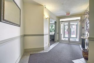Photo 4: 202 2 14 Street NW in Calgary: Hillhurst Apartment for sale : MLS®# A1094685