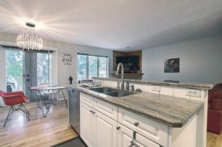 Photo 17: 1650 Westmount Boulevard NW in Calgary: Hillhurst Semi Detached for sale : MLS®# A1136504