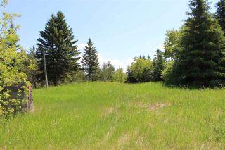 Main Photo: 59102 Rge Rd 234: Rural Westlock County Rural Land/Vacant Lot for sale : MLS®# E4237001
