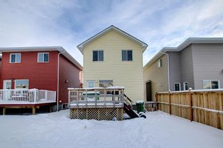 Photo 38: 66 Redstone Road NE in Calgary: Redstone Detached for sale : MLS®# A1071351