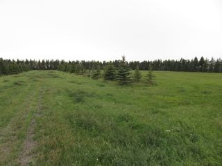 Photo 13: 0 Centreline Road: RM Springfield Vacant Land for sale (R04)  : MLS®# 202103923