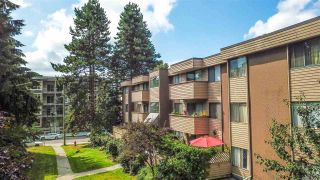 """Main Photo: 4 2443 KELLY Avenue in Port Coquitlam: Central Pt Coquitlam Condo for sale in """"Orchard Valley Estates"""" : MLS®# R2587384"""