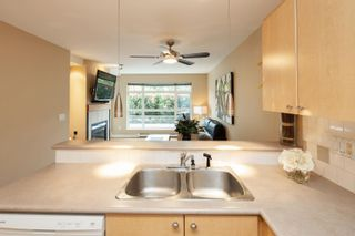 """Photo 9: 227 3122 ST JOHNS Street in Port Moody: Port Moody Centre Condo for sale in """"SONRISA"""" : MLS®# R2620860"""