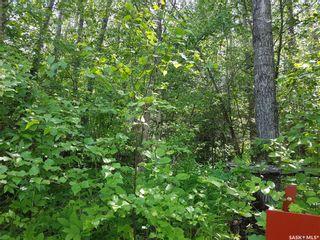 Photo 7: 23 Delaronde Way in Delaronde Lake: Lot/Land for sale : MLS®# SK869705