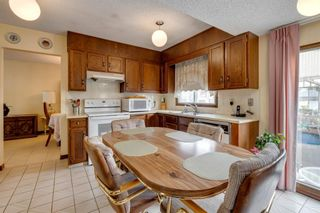 Photo 6: 147 Templevale Place NE in Calgary: Temple Detached for sale : MLS®# A1144568