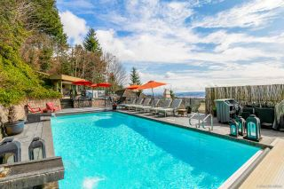 Photo 8: 13427 55A Avenue in Surrey: Panorama Ridge House for sale : MLS®# R2600141