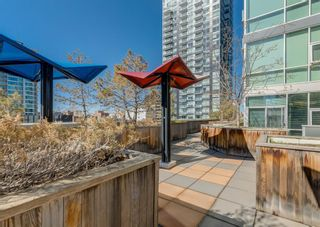Photo 25: 607 135 13 Avenue SW in Calgary: Beltline Apartment for sale : MLS®# A1105427