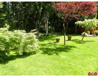 "Photo 9: 14853 BLACKBIRD Crescent in Surrey: Bolivar Heights House for sale in ""BIRDLAND"" (North Surrey)  : MLS®# F2911695"