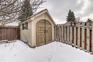 Photo 44: 5916 Dalcastle Drive NW in Calgary: Dalhousie Detached for sale : MLS®# A1085841