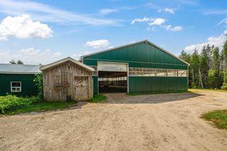 Photo 4: 674198 Hurontario Street in Mono: Rural Mono House (Bungalow) for sale : MLS®# X5364291