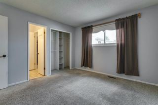 Photo 20: 4763 Rundlewood Drive NE in Calgary: Rundle Detached for sale : MLS®# A1107417