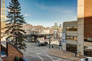 Photo 38: 305 330 26 Avenue SW in Calgary: Mission Apartment for sale : MLS®# A1098860