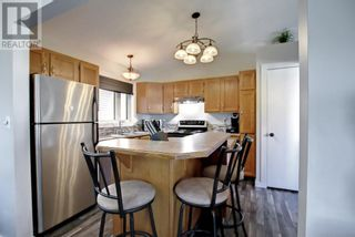 Photo 13: 95 Castle Crescent in Red Deer: House for sale : MLS®# A1144675