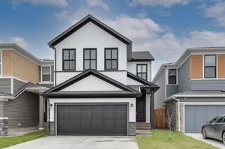 Main Photo: 17 Howse Terrace NE in Calgary: Livingston Detached for sale : MLS®# A1131746