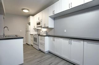 Photo 8: 3210 30A Avenue SE in Calgary: Dover Semi Detached for sale : MLS®# A1055012