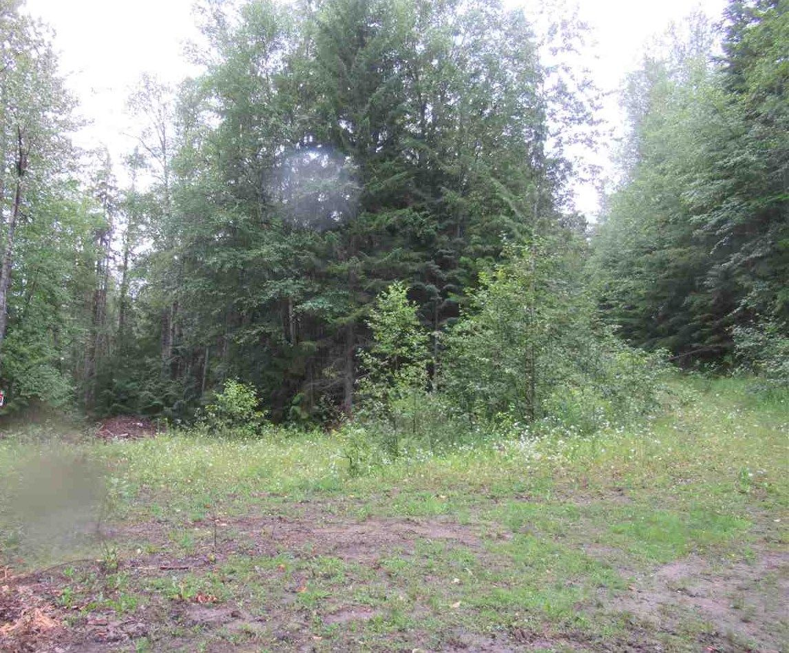 """Photo 16: Photos: LOT 3 HAGGENS POINT Road: Horsefly Land for sale in """"QUESNEL LAKE"""" (Williams Lake (Zone 27))  : MLS®# R2398733"""