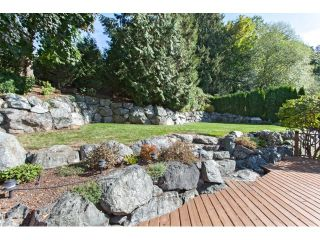 Photo 20: 2480 CAMERON Crescent in Abbotsford: Abbotsford East House for sale : MLS®# R2001058