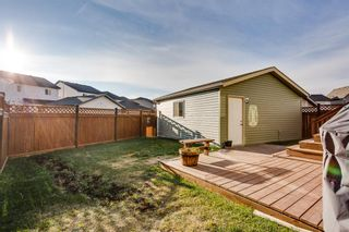 Photo 18: 115 SKYVIEW SPRINGS Gardens NE in Calgary: Skyview Ranch Detached for sale : MLS®# A1035316