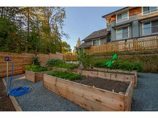 """Photo 12: 58 23651 132ND Avenue in Maple Ridge: Silver Valley Townhouse for sale in """"MYRON'S MUSE AT SILVER VALLEY"""" : MLS®# V1131894"""