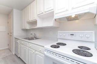 Photo 8: 302 3255 Glasgow Ave in : SE Quadra Condo for sale (Saanich East)  : MLS®# 875835