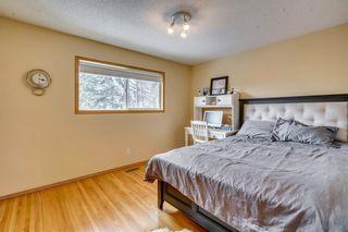 Photo 27: 31 Mapleglade Close SE in Calgary: Maple Ridge Detached for sale : MLS®# C4306139
