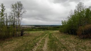 Photo 4: Viewmar Drive: Rural Ponoka County Land for sale : MLS®# C4288523