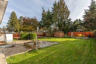 Photo 20: 21616 EXETER Avenue in Maple Ridge: West Central House for sale : MLS®# R2318244