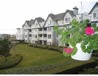 """Photo 6: 218 12639 NO 2 RD in Richmond: Steveston South Condo for sale in """"NAUTICA SOUTH"""" : MLS®# V582114"""