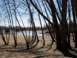 Photo 33: 695 Mclenaghen Drive in Portage la Prairie: House for sale : MLS®# 202109619