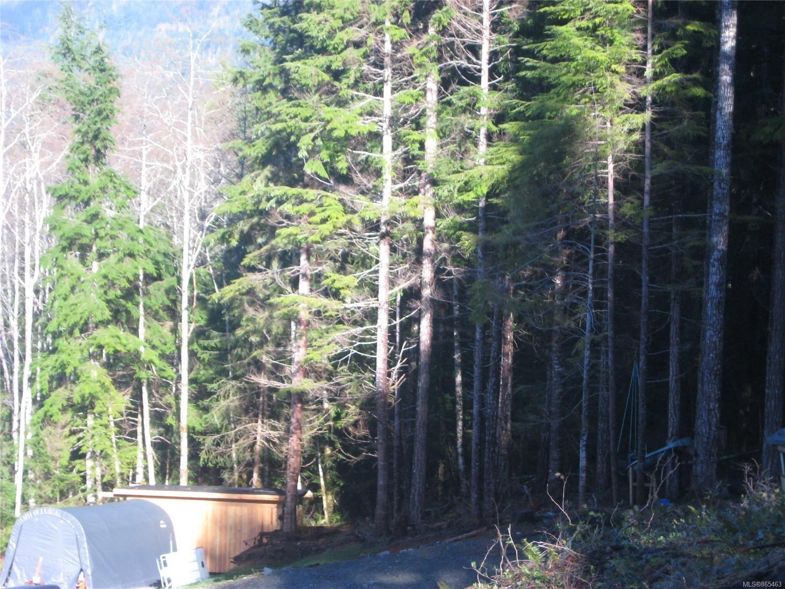 Photo 10: Photos: 1230 Cottonwood Rd in : NI Kelsey Bay/Sayward Land for sale (North Island)  : MLS®# 865463