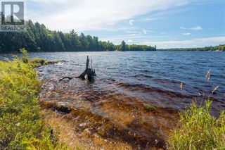 Photo 47: 399 HEALEY LAKE Road in MacTier: House for sale : MLS®# 40163911