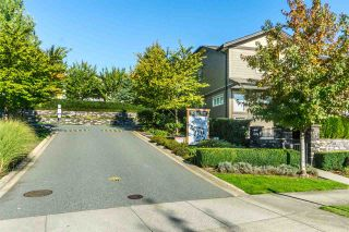 """Photo 18: 44 22865 TELOSKY Avenue in Maple Ridge: East Central Townhouse for sale in """"WINDSONG"""" : MLS®# R2313663"""