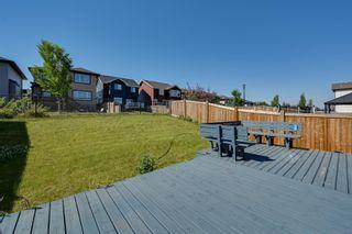Photo 5: 5619 18 Avenue in Edmonton: Zone 53 House for sale : MLS®# E4252576